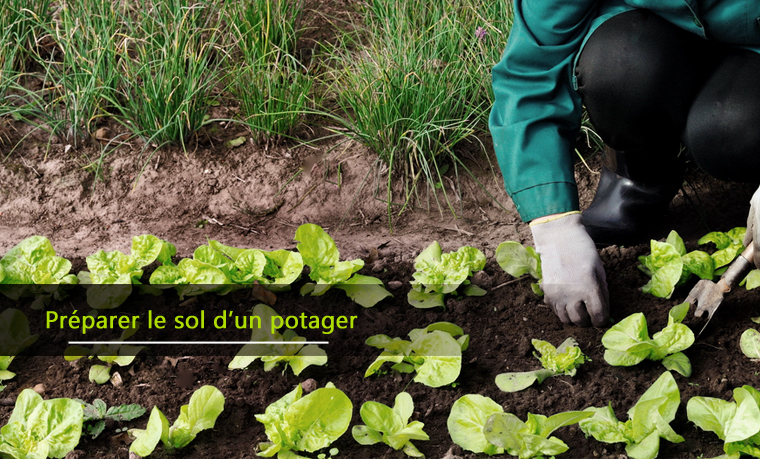 Bien préparer le sol d'un potager