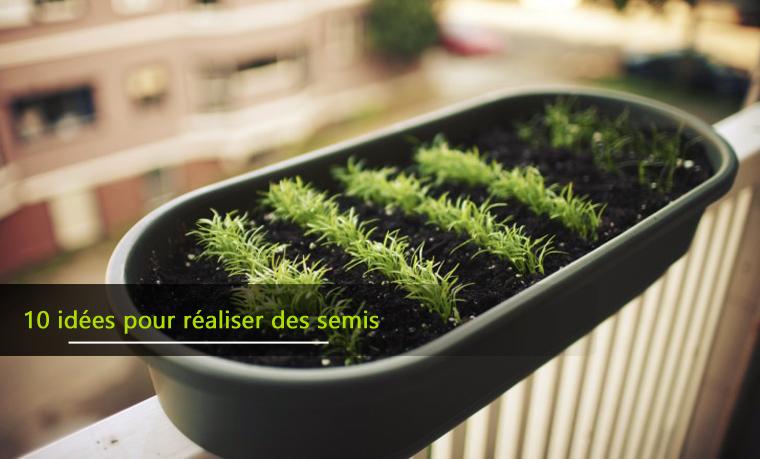 10 idées pour réaliser vos semis de jardin potager