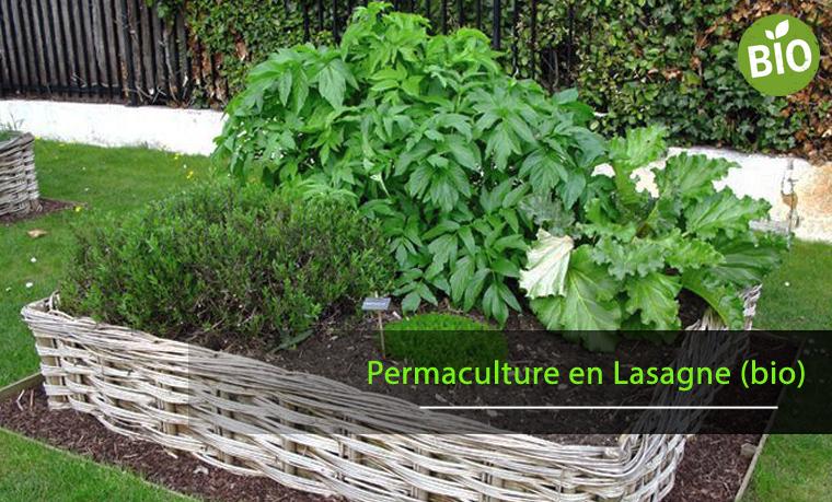 Pratiquer la permaculture en lasagne pour un potager biologique