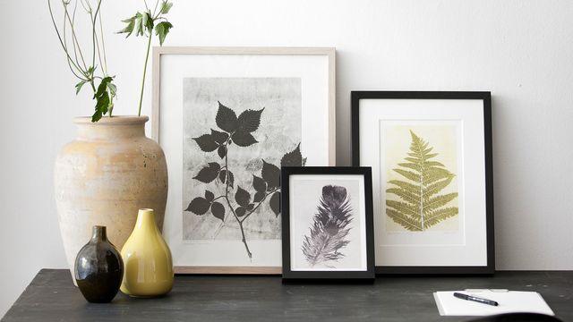 Souvenirs de voyage herbiers