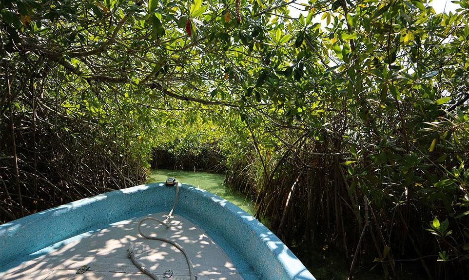 Réserve naturelle de Sian Ka'an Mexique