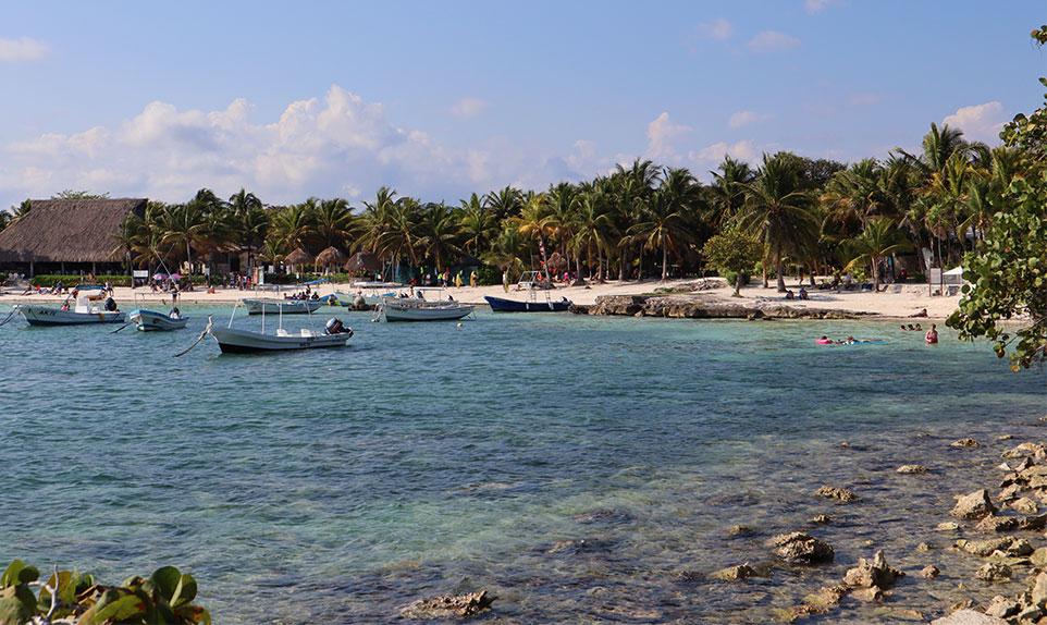 Plage des tortues Mexique , Playa del carmen