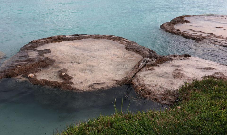 stromatolites Bacalar